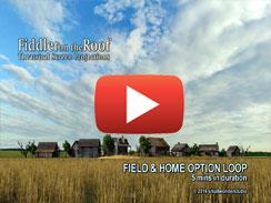 FIELD & HOME OPTION LOOP 5 mins
