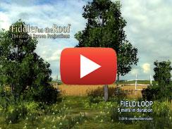 FIELD-LOOP-5-mins