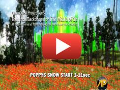 Poppys Snow Start 1 11sec