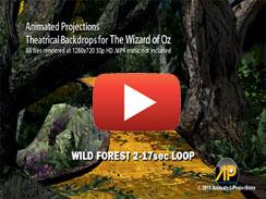 WILD FOREST 2 17sec LOOP