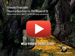 WILD FOREST INTRO 30sec