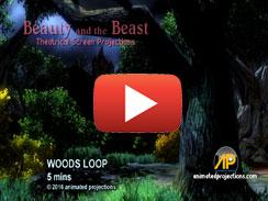 WOODS LOOP 5 mins