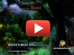 WOODS & MAGIC SPELL