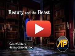 WCastle Library 4min seamless loop